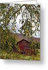 A Peak Of Fall Red Barn Greeting Card