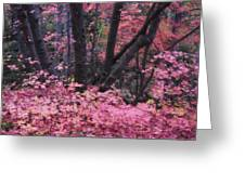 A Pink Autumn  Greeting Card