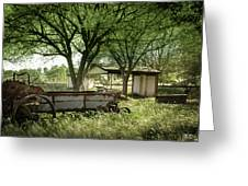 A Place In The Shade Greeting Card