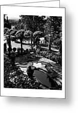 A Pond In An Ornamental Garden Greeting Card
