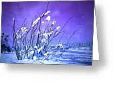 A Purple Winter Greeting Card