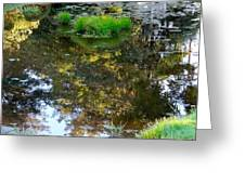 A Quiet Little Pond Greeting Card