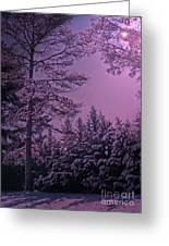 A Quiet Snowy Night Greeting Card