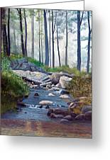 A Quiet Stream In Moodus Greeting Card