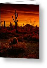 A Red Desert  Greeting Card