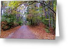 A Road In Autumn. Greeting Card