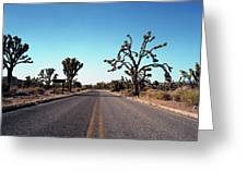 A Road Leads Through Joshua National Greeting Card