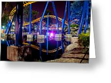 A Rollercoaster At A Theme Park In Usa Greeting Card