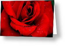 A Rose For A Sweetheart Greeting Card
