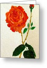 A Rose For Rosa Greeting Card