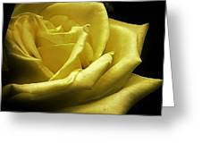 A Rose For You Greeting Card