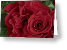 A Rose Within A Rose Greeting Card