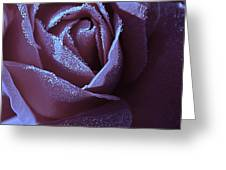 A Rose That Glitters Greeting Card
