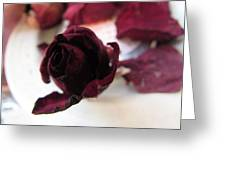 A Rosey View Greeting Card