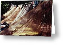 A Row Of Mosquito Netting Over Sleeping Greeting Card