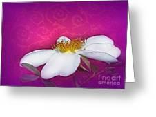 A Royal Rose Greeting Card