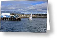 A Sailing Yacht Passes The Wharf In Sidney Harbour Greeting Card