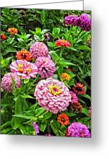 A Sea Of Zinnias 08 Greeting Card