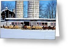 A Sheepish Winter's Day Greeting Card