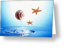 A Shell And Two Starfish Floating Greeting Card