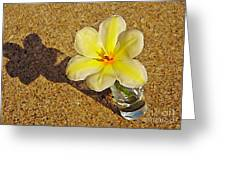 A Shot Of Yellow Greeting Card