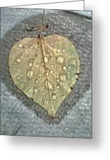 A Simple Leaf Greeting Card