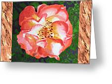 A Single Rose The Dancing Swirl  Greeting Card