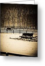 A Snow Covered Horse Farm Greeting Card