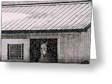 A Snowfall At The Stable Greeting Card