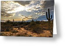 A Sonoran Desert Sunset  Greeting Card