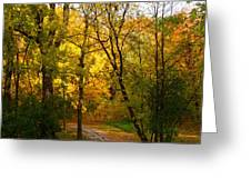 A Special Road Greeting Card by Jocelyne Choquette
