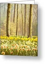A Spring Day Greeting Card by Jasna Buncic