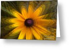 A Star Flower Greeting Card