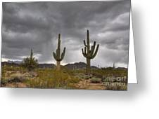 A Storm In The Sonoran Desert Greeting Card
