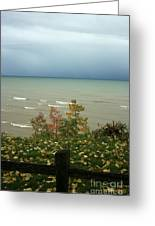 A Storm Is Brewing Greeting Card