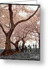 A Stroll In Central Park Greeting Card