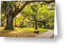 A Stroll In City Park Greeting Card