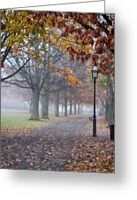 A Stroll In Salem Fog Greeting Card