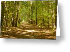 A Stroll In The Park Greeting Card