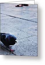 A Stroll In The Piazza  Greeting Card