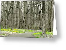 A Stroll Through Peace Valley Greeting Card