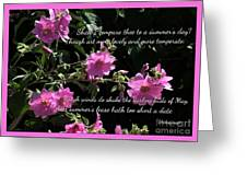 A Summer's Day Pink Romance Greeting Card
