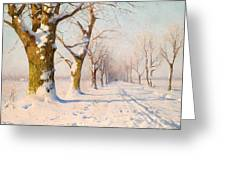A Sunny Winter's Day Greeting Card