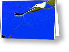 A Surf Fisherman Greeting Card