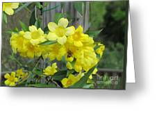 A Taste Of Yellow Greeting Card