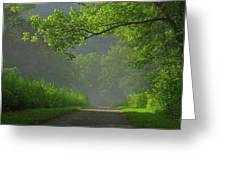 A Touch Of Green Greeting Card