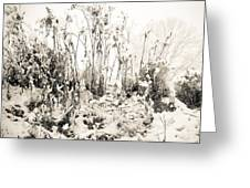 A Touch Of Snow Greeting Card by Nancy Edwards