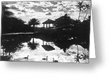 A Tranquil Scene In Hawaii Greeting Card