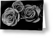 A Trio Of Roses Greeting Card