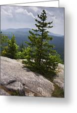 A View From A Mountain In A Vermont State Park Greeting Card